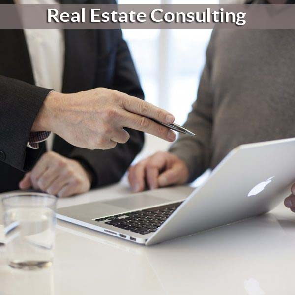 consulting-for-real-estate-michigan-600x600
